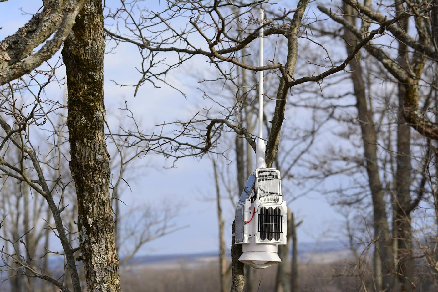 One of the Outland Analytics devices set up in the Finger Lakes National Forest.